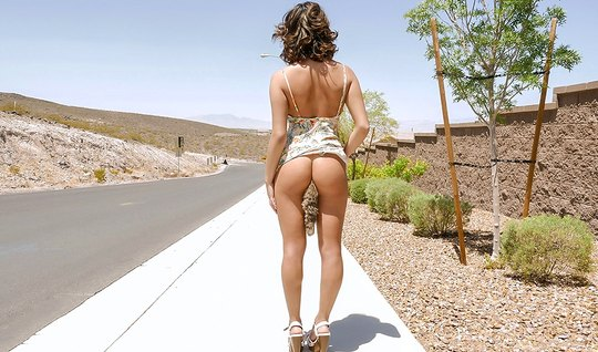 Пикапер подцепил шлюху на дороге и воспользовался ее красивым телом